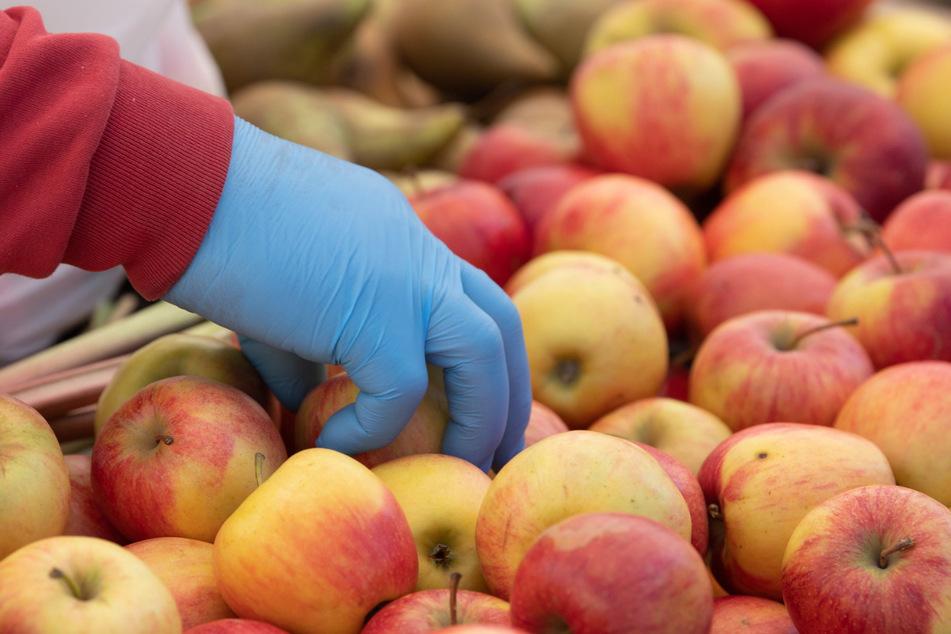 Ein Händler mit Einweghandschuhen sortiert auf einem Wochenmarkt Äpfel.