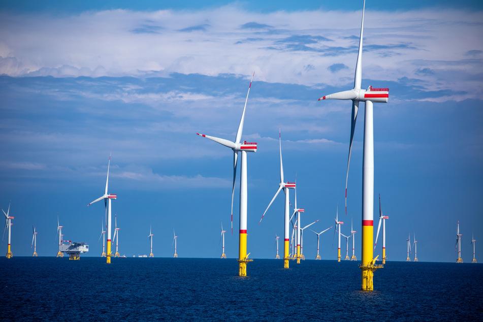 Zwei der neuen Windparkflächen liegen in der Nordsee vor den ostfriesischen Inseln, die dritte in der Ostsee nordöstlich der Insel Rügen.
