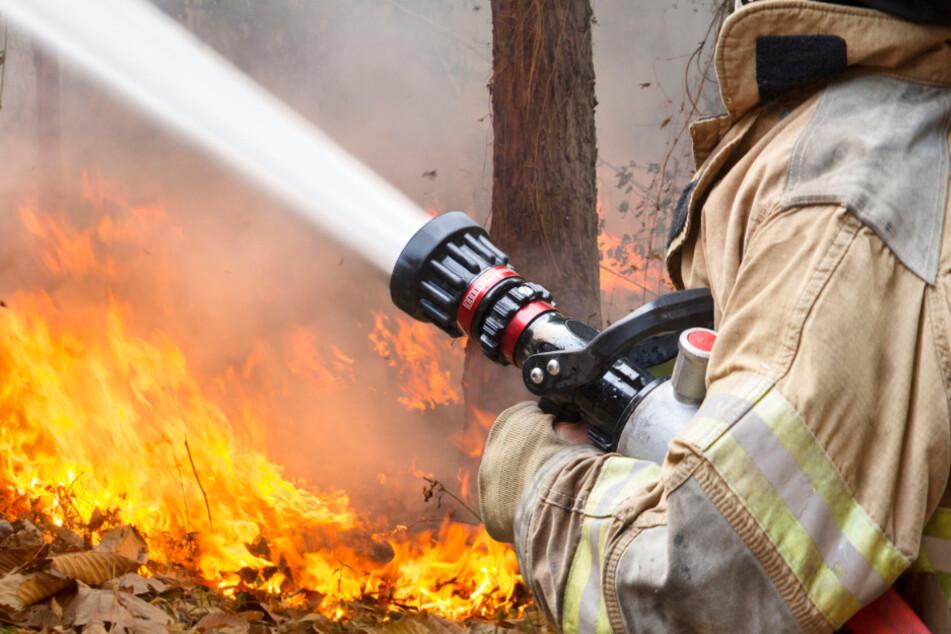 In vielen Wäldern in Bayern könnten am Donnerstag schon die zweithöchste von fünf Waldbrand-Gefahrenstufen erreicht werden. (Symbolbild)