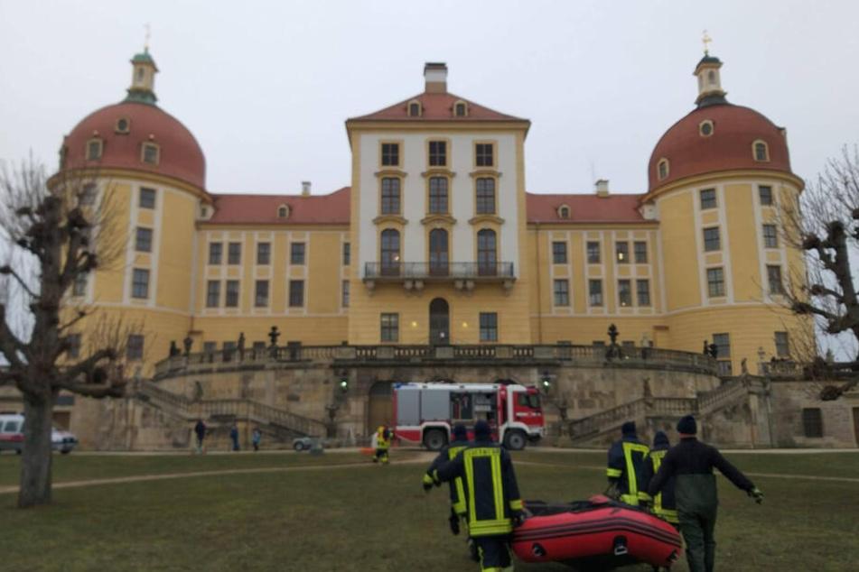 Dresden: Festgefroren? Schwan führt die Feuerwehr aufs Glatteis