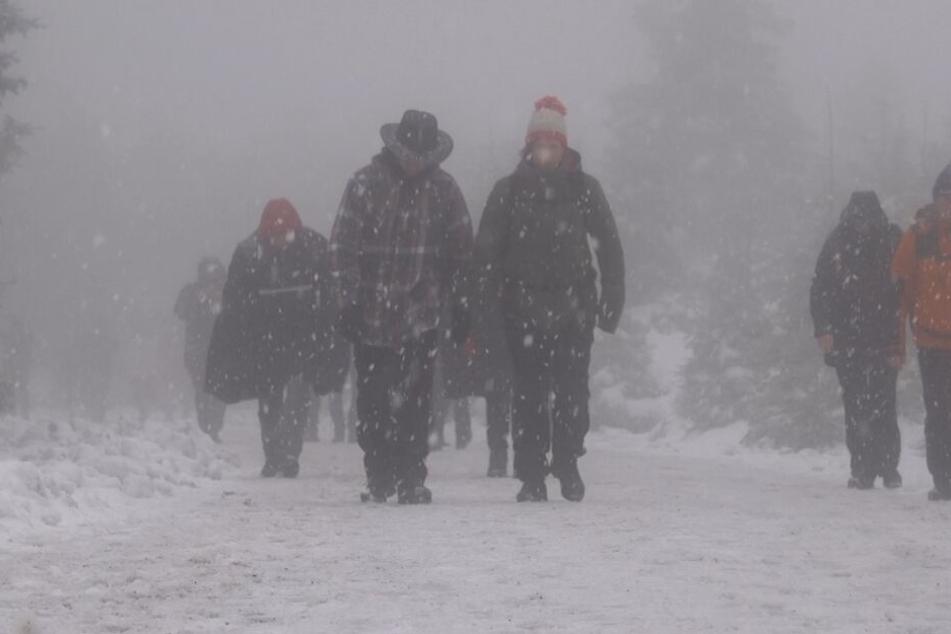 Ein eisiger Wind pfeift über den Harz.