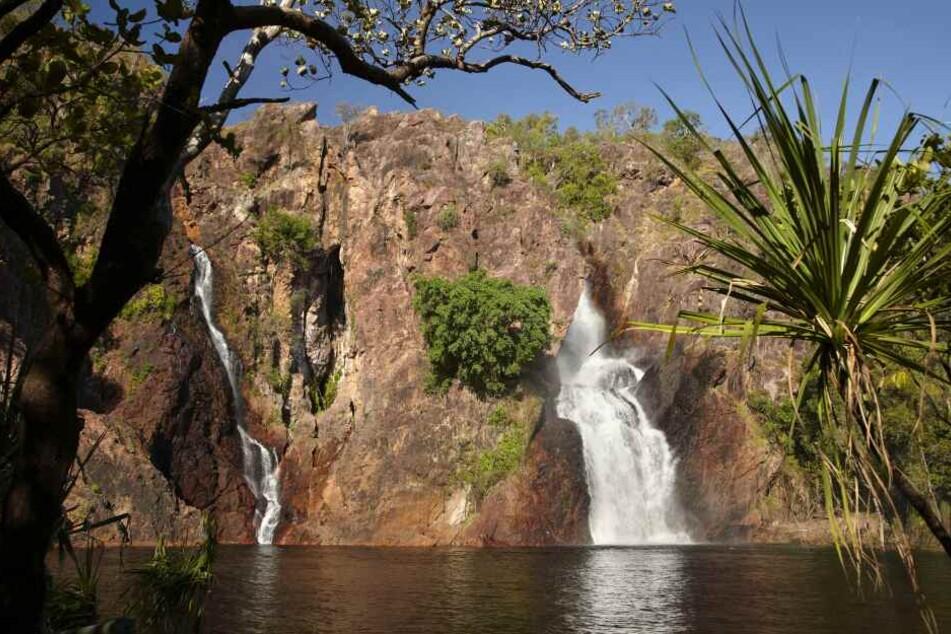 """Die """"Wangi Falls"""" im """"Lichtfield National Park"""" in Australien sind bei Touristen extrem beliebt."""