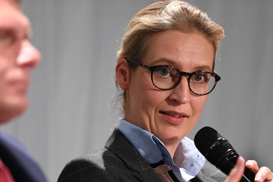 Alice Weidel (38) will die AfD bis 2021 regierungsfähig machen.