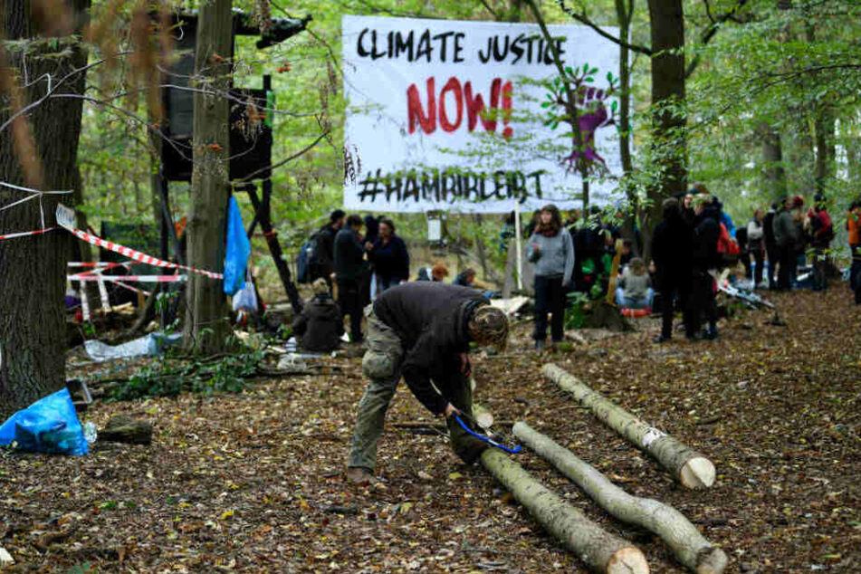 Neue Aktivistengruppen kommen in den Hambacher Forst. Ein Leitfaden soll den neuen Gruppen im Hambacher ForstOrientierung geben, um dem Wald nicht zu schaden.