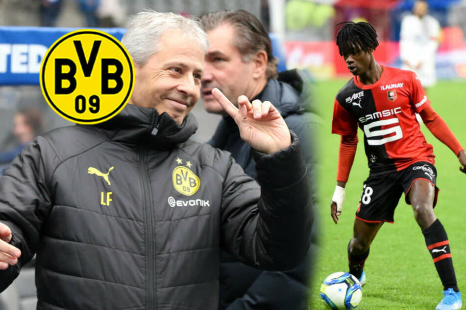 BVB vor Rekord-Coup? Dortmund wirbt wohl um dieses Mega-Talent (17)!