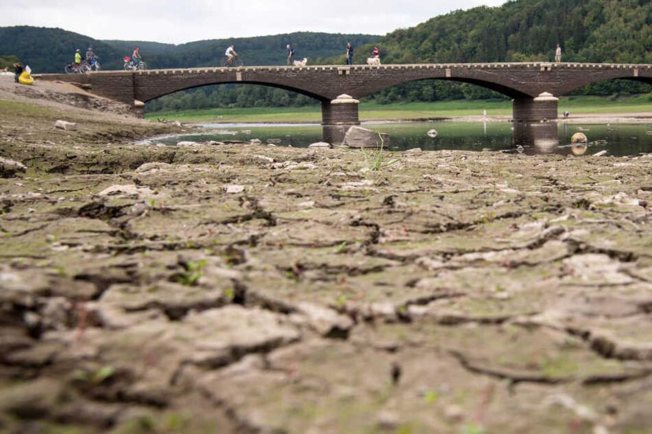 Die anhaltende Trockenheit hat den Wasserstand des hessischen Edersees auf ein Viertel sinken lassen.