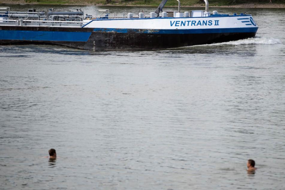 Menschen schwimmen im Rhein, während ein Frachtschiff vorbei fährt (Archivbild).