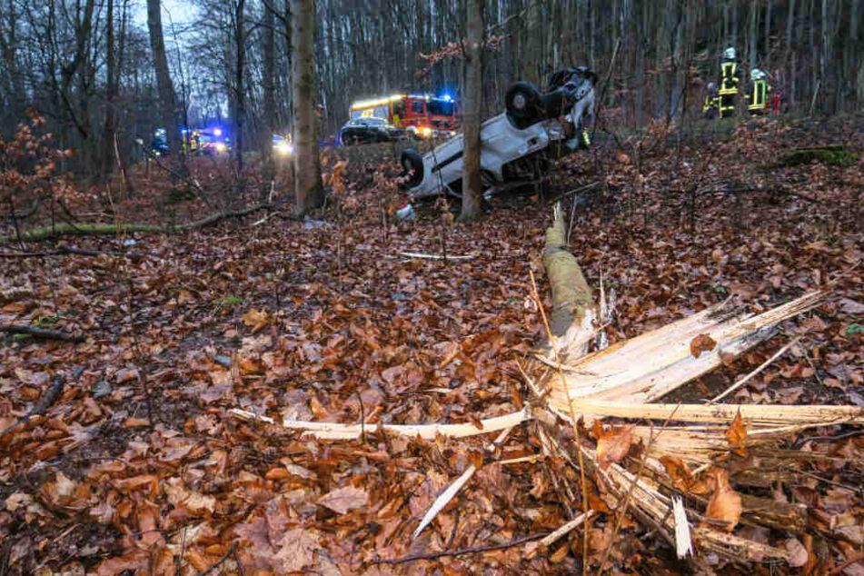 Der Dacia überschlug sich und fällte noch zwei kleinere Bäume.