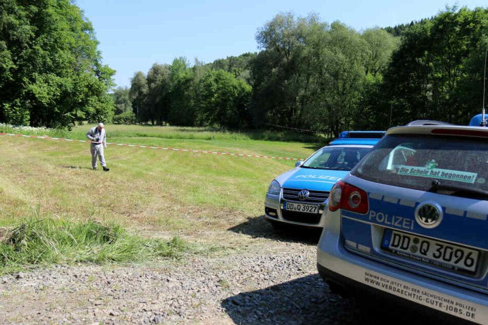 Ein Spaziergänger entdeckte auf einer Wiese im Wilkau-Haßlauer Ortsteil Culitzsch die Babyleiche.