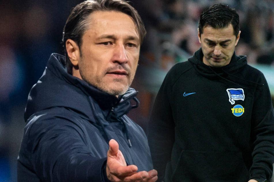 Niko Kovac (l) ist die Wunschlösung der Hertha-Fans. Ante Covic (r) bangt um seinen Job.