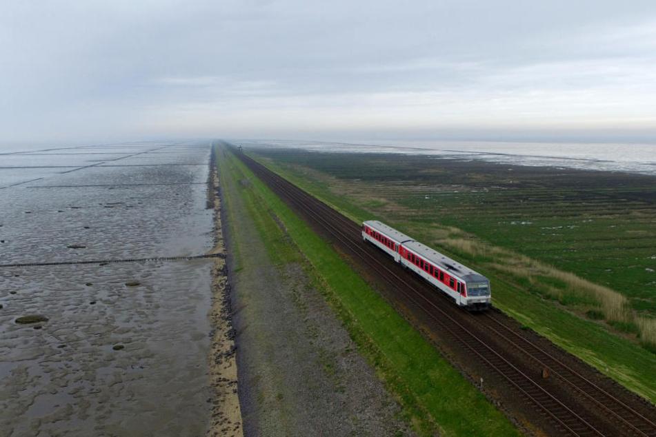 Ein Zug der Deutschen Bahn fährt über den Hindenburgdamm zwischen Sylt und Niebüll. (Archivbild).