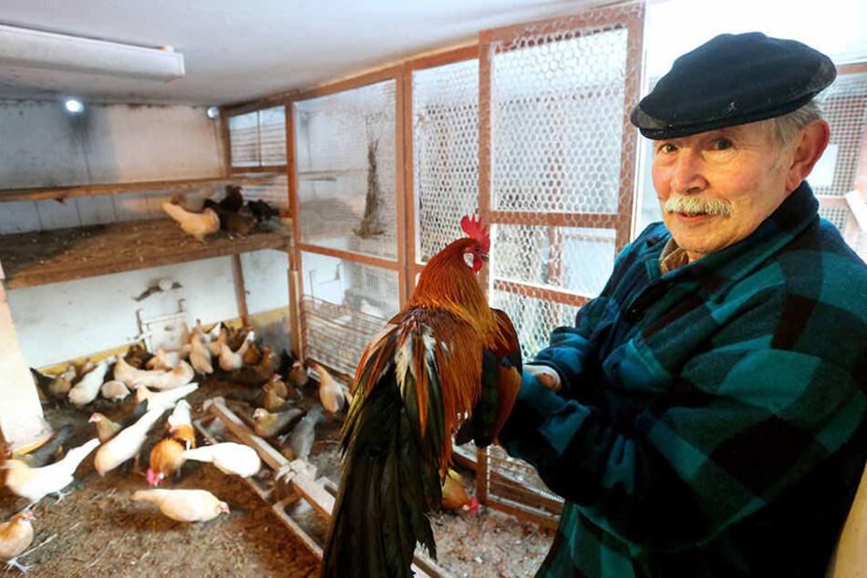 Seit November herrscht Stallpflicht. Von der sind auch die Tiere von Manfred Schubert (77) betroffen.