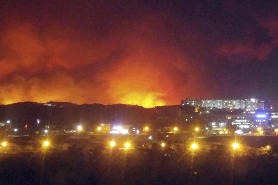 Überall Flammen und Feuer: Ein Waldbrand in der südkoreanischen Stadt Goseong.