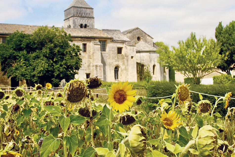 In Saint-Rémy-de-Provence lebte und wirkte der berühmte Künstler Vincent van Gogh.