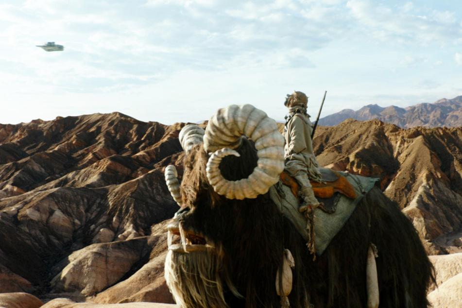 Auch die Tusken-Räuber/Sandmenschen spielen in der neuen Folge eine entscheidende Rolle.