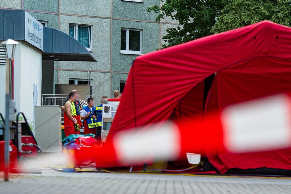 Die Rettungskräfte versuchten ein Ausbreiten des Ungeziefers in dem Haus zu verhindern.