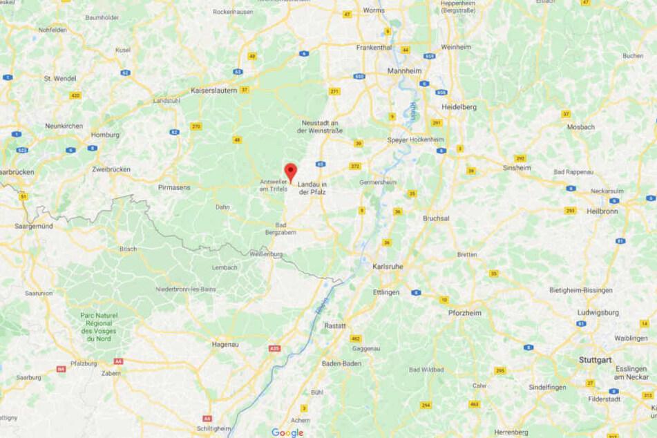 Auf der B10 bei Birkweiler wurde der Lasterfahrer abgelenkt.