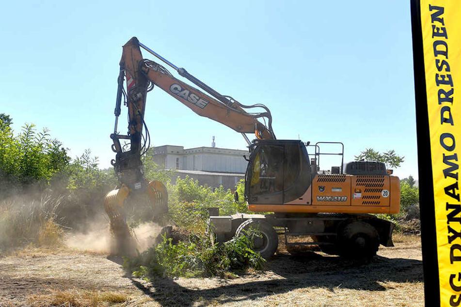 Seit Sommer laufen die Erdarbeiten für das neue Trainingsgelände im Ostragehege. Die Grundsteinlegung soll noch in diesem Jahr erfolgen.