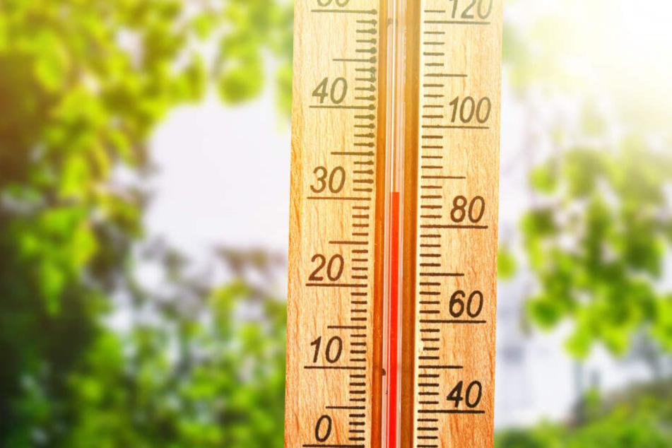 Am Wochenende wird es noch einmal richtig heiß in Berlin und Brandenburg (Symbolbild).