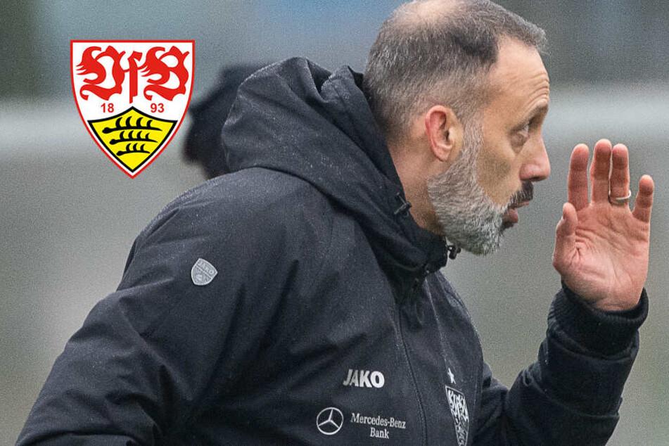 """""""Optimistischer Realist"""": VfB-Coach Matarazzo geht Herausforderung mit """"Demut"""" an"""