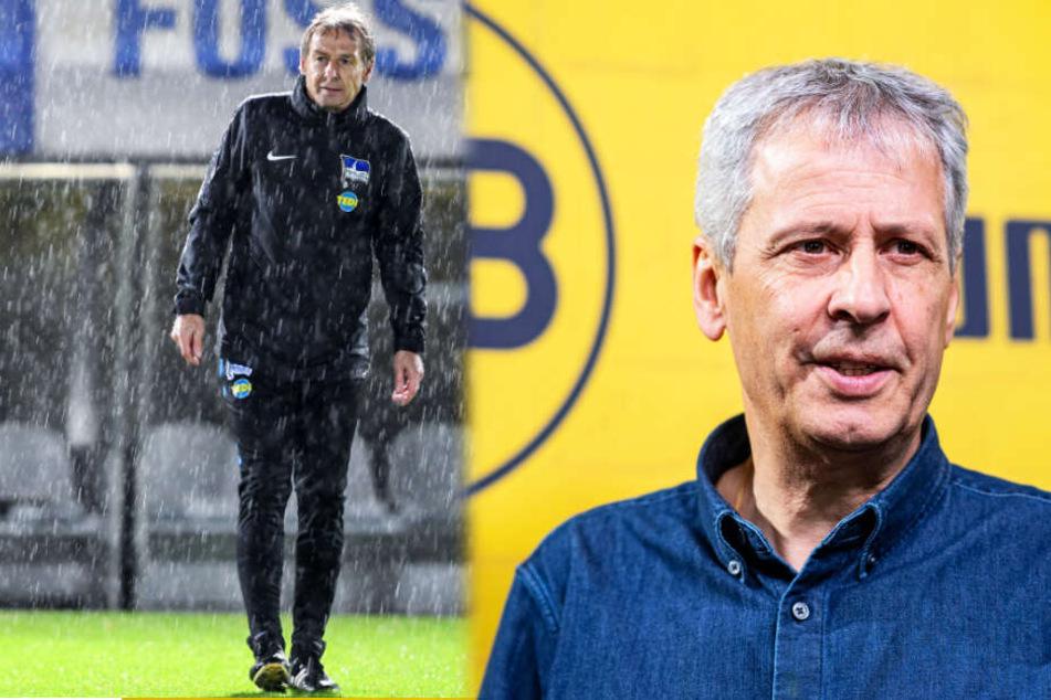 BVB-Coach Lucien Favre (r.) konnte mit Dortmund einen ganz wichtigen 2:1-Sieg bei Jürgen Klinsmann und Hertha BSC feiern.