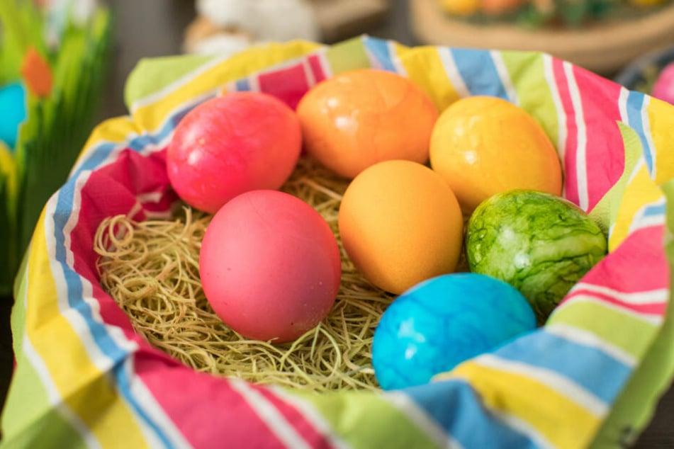 Auf die Eiersuche könnt Ihr euch dieses Jahr bei herrlichem Wetter machen.