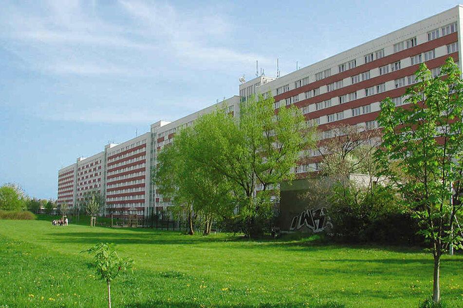 """Die """"Lange Lene"""" bestand der LWB. Das städtische Unternehmen soll in den kommenden Jahren weiteren Wohnraum schaffen - auch durch Neubau."""