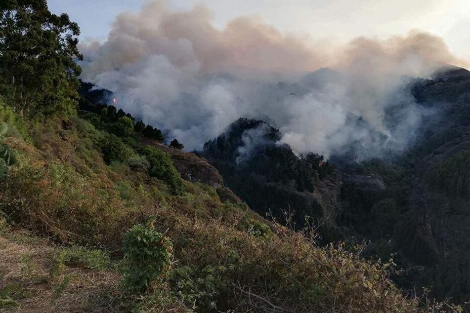"""""""Extrem aggressives"""" Feuer: Waldbrand auf beliebter Urlaubsinsel wütet weiter"""