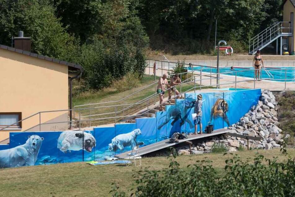 """Künstler """"Tasso"""" Jens Müller (52) verschönert das Freibad in Hartmannsdorf bei Kirchberg mit einer tierischen Unterwasserwelt."""