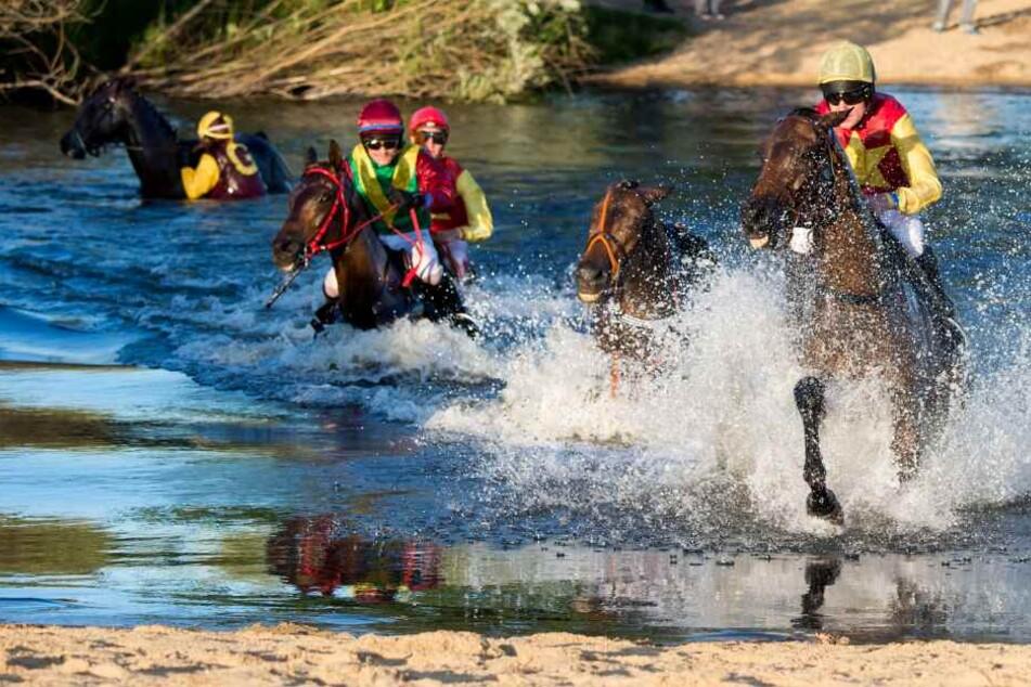 Die Jockeys mussten sich mit ihren Pferden durch einen See kämpfen.