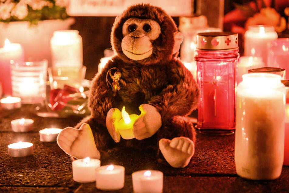 Bei dem Brand in der Nacht zum Mittwoch sind mehr als 30 Tiere gestorben.
