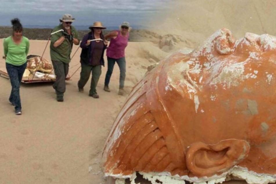 An kalifornischem Strand: Sphinx-Kopf ausgegraben