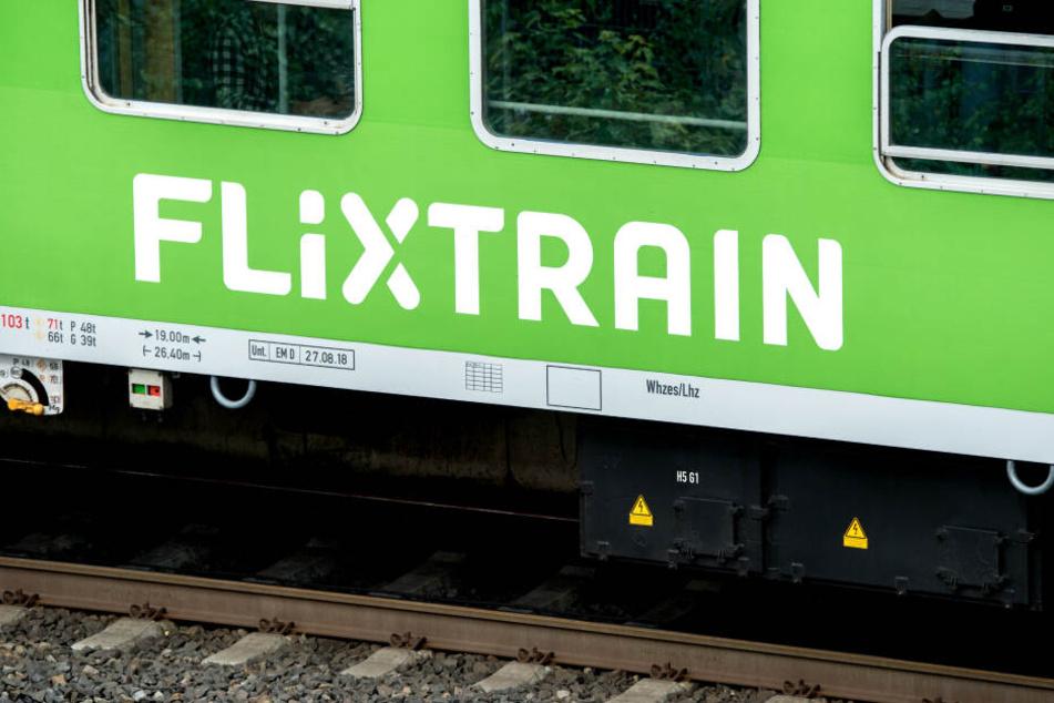 Bald sollen die Züge auch ins Ausland fahren.