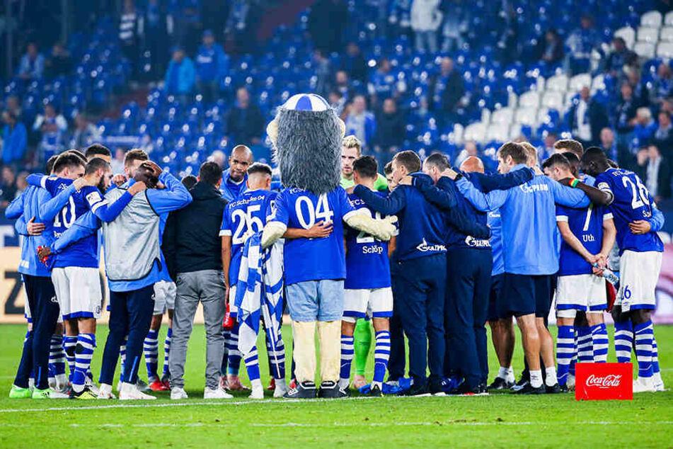 Der FC Schalke 04 steckt tief in der Krise und wartet als Tabellenletzter weiter auf seinen ersten Bundesliga-Sieg in dieser Saison.