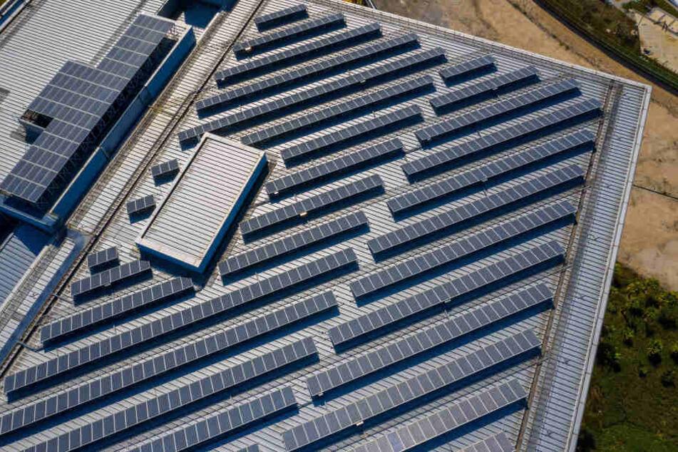 Auf dem Dach des neues Gebäudes wird eine Photovoltaik-Anlage für grünen Strom sorgen.