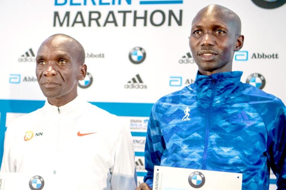 Sie wollen beim Berlin-Marathon den Weltrekord knacken!