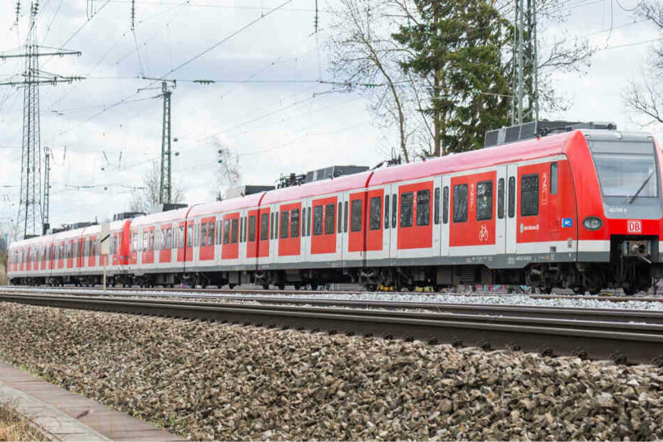 Mobilität in Bayern: Grüne wollen Bahn-Nebenstrecken reaktivieren