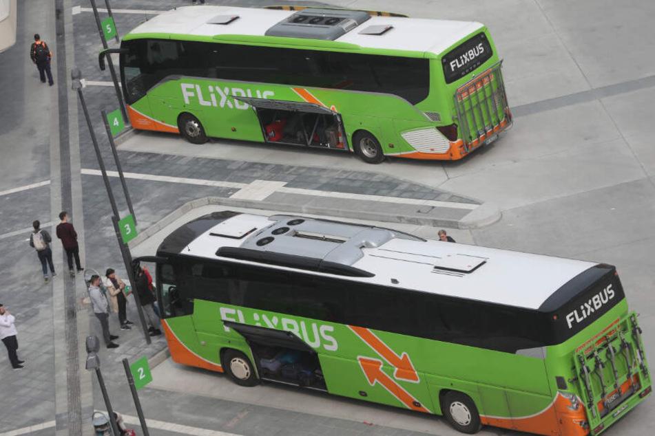 Als Antwort auf das Klimapaket plant Flixbus nun keine ökologischen Innovationen mehr für Deutschland.