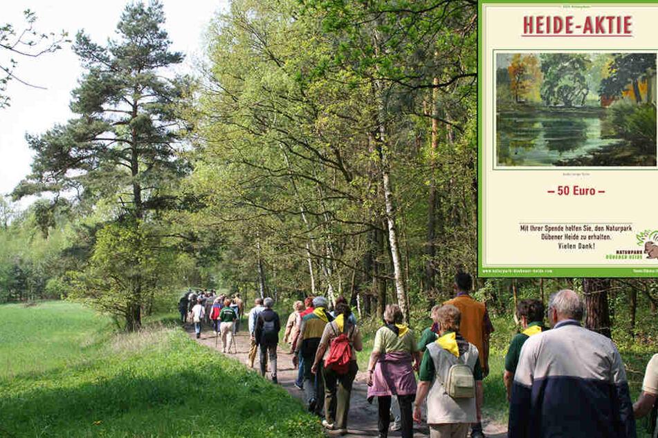 Die Heide-Aktie gibt es seit 2008. Die Gelder werden für verschiedene Projekte im Naturpark Dübener Heide verwendet.