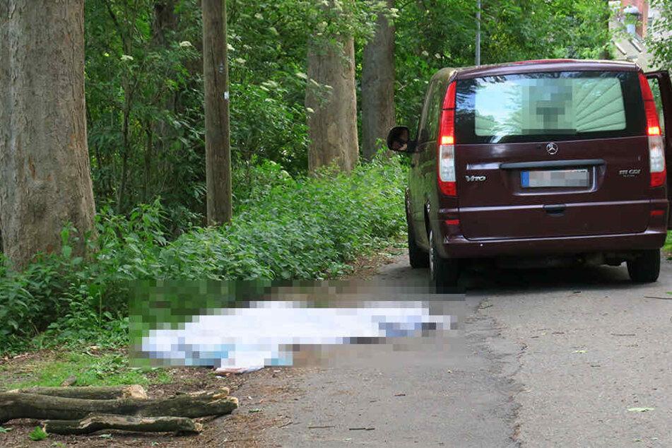 Eine Seniorin wurde in Flöha von einem Ast erschlagen.