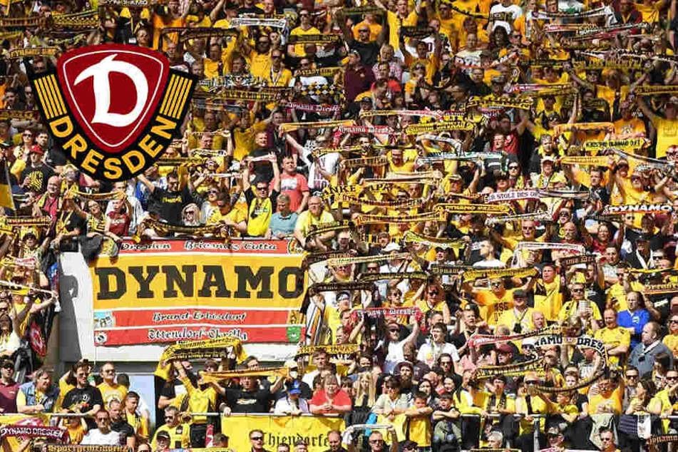"""""""Zweistellig beim HSV""""! Eigene Fans übergießen Dynamo mit Häme"""