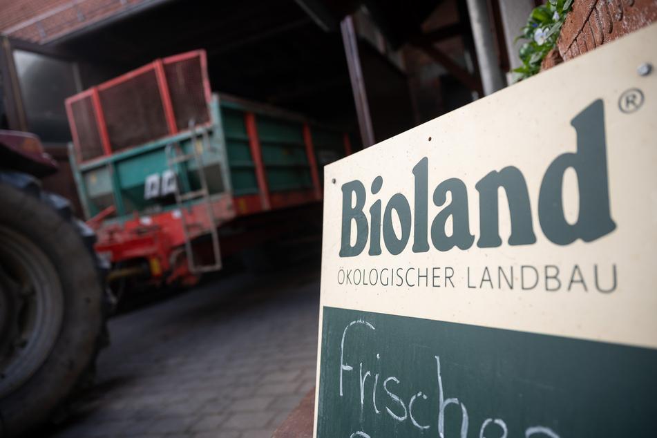 """""""Die Kunden standen Schlange"""": Bio-Lebensmittel boomen weiter"""
