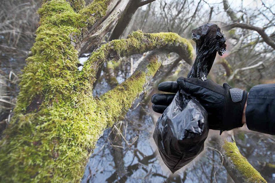 Der Mann (26) war dabei, eine Tüte mit Cannabis in einem Busch zu verstecken, als die Polizei ihn schnappte. (Symbolbild)
