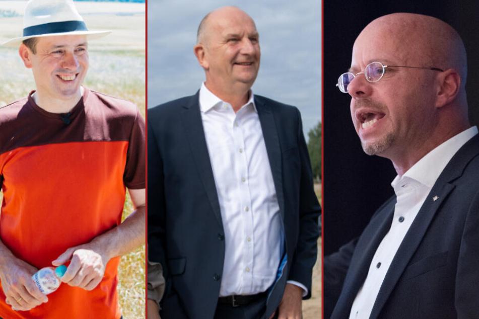 Drei Wochen vor Landtagswahl in Brandenburg: Kopf-an-Kopf-Rennen, AfD vorn