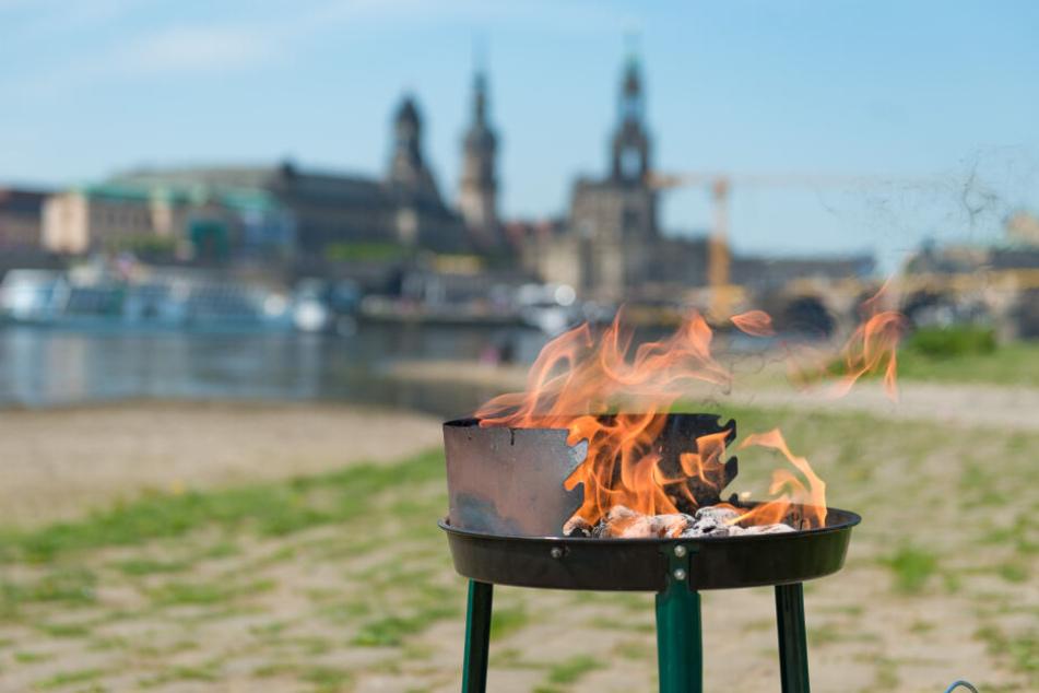 In Dresden gibt es viele schöne Grillplätze entlang der Elbe mit fantastischem Blick auf das Stadtpanorama.