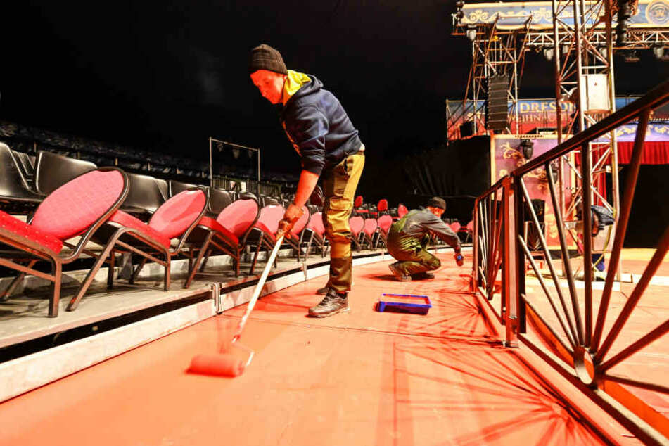 Unterm Chapiteau wird alles fein gemacht. Maler Vlad (24) rollert den Gang hinter den Logen mit frischem Rot.