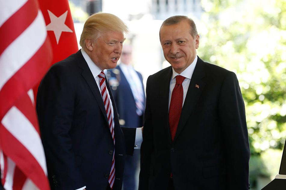 Nachdem US-Präsident Donald Trump (li.) amerikanische Truppen aus Nordsyrien abgezogen hatte, schickte der türkische Präsidenten Recep Tayyip Erdogan seine Truppen in das Gebiet.
