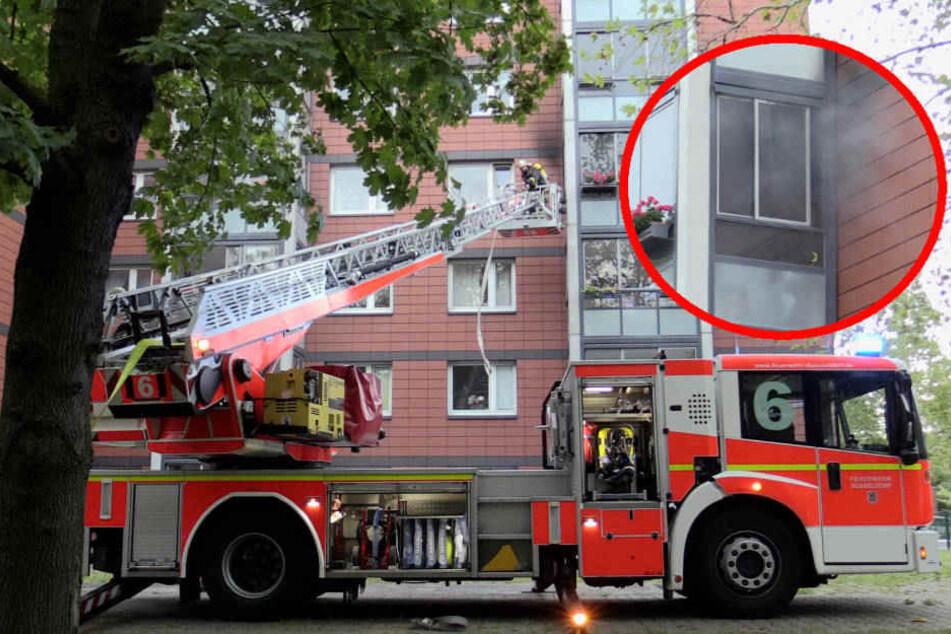 Hochhaus in Düsseldorf brennt: Feuerwehr rückt zu Katzenrettung an