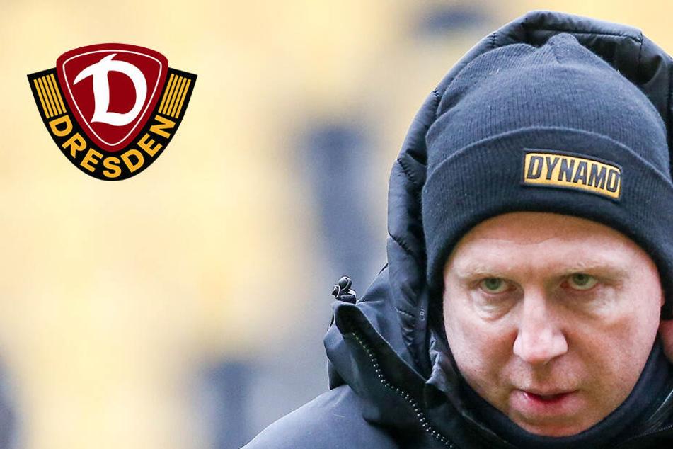 """Dynamo bereit für Bielefeld: """"Wir verstecken uns nicht"""""""