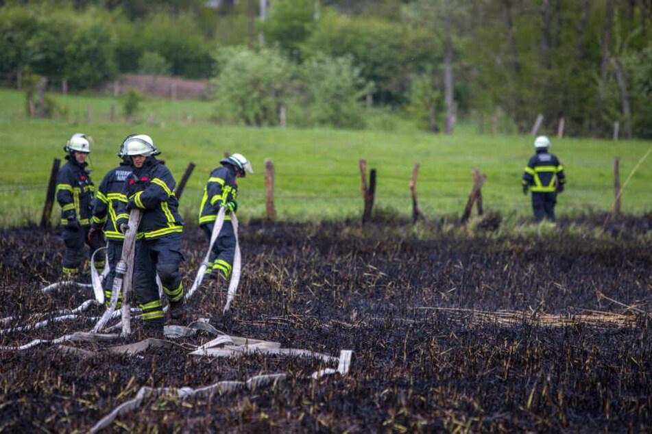 Zwei Feuerwehren löschten das brennende Gras- und Buschwerk im Stadtteil Hamburg-Rahlstedt.